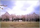 武蔵野音楽大学附属多摩音楽教室開設